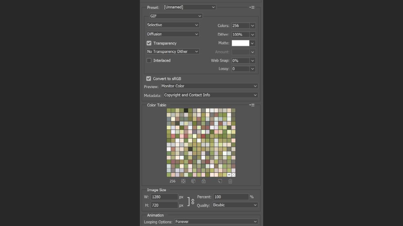 Voreinstellungen Export GIF