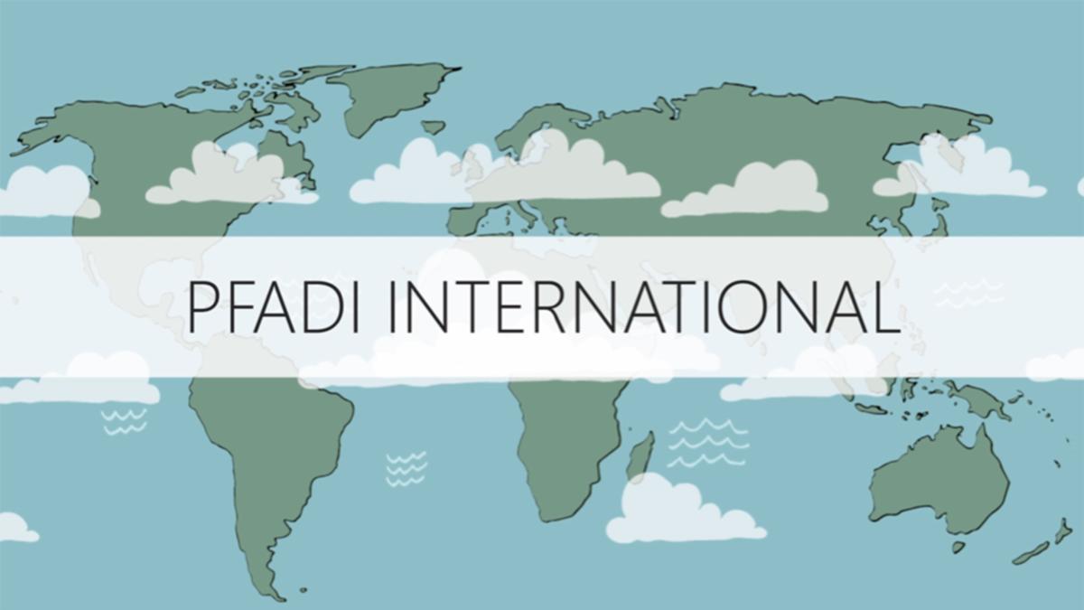 Pfadi International