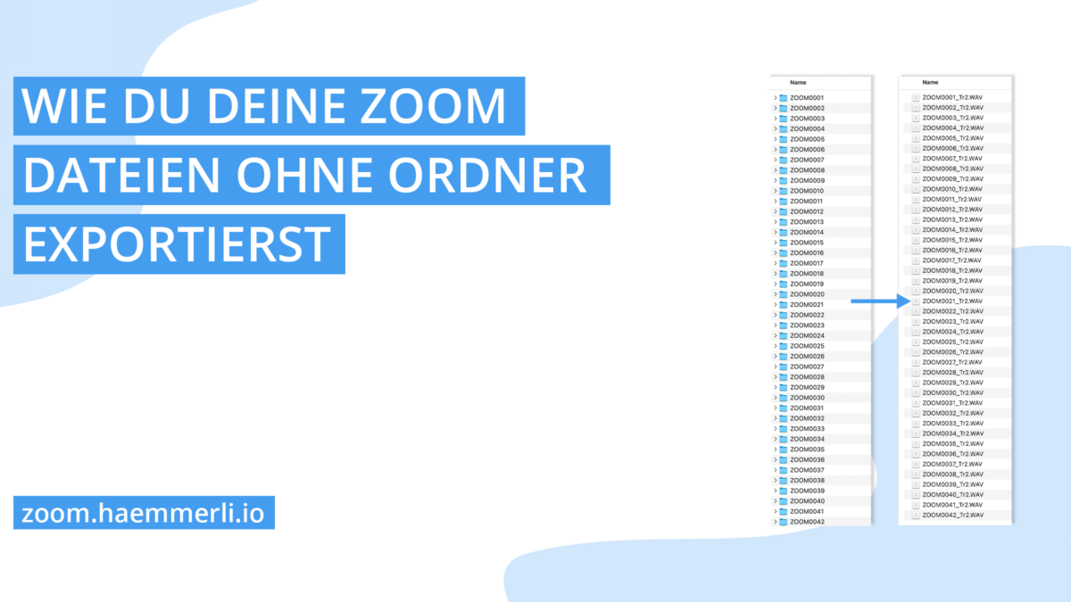 export files from zoom without folders